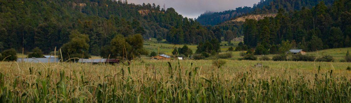 Tepehuanes Durango