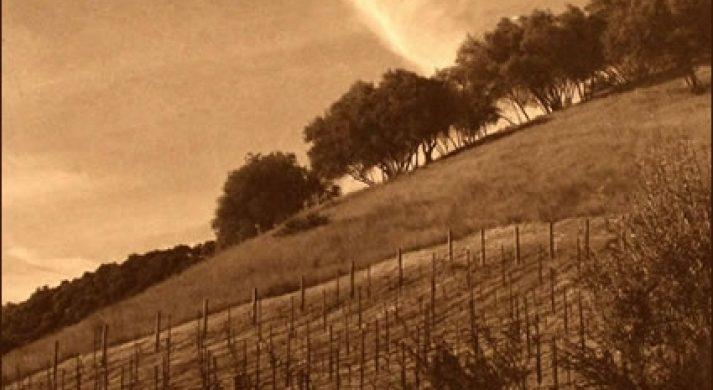 Lindstrom Wines