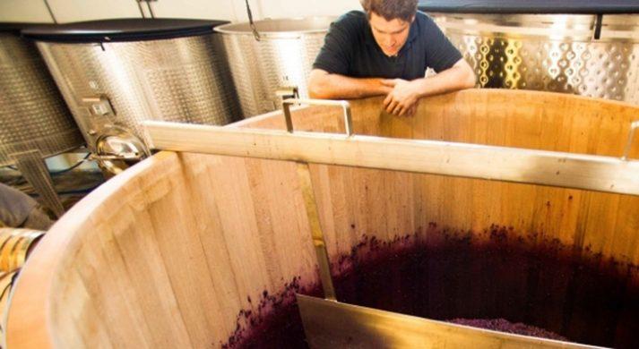 Luli Wines