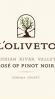 L'Oliveto Rose of Pinot Noir Russian River 2016