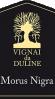 Vignai da Duline Friuli Colli Orientali Refosco