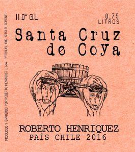 Roberto Henríquez Santa Cruz de Coya 2016