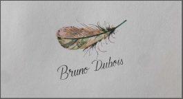 Bruno Dubois Saumur-Champigny